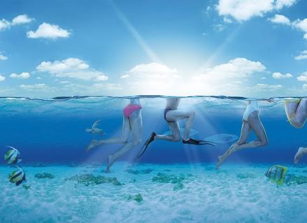 Ocean Floor Indian Ocean