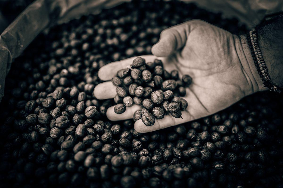 {Coffee Island}-24