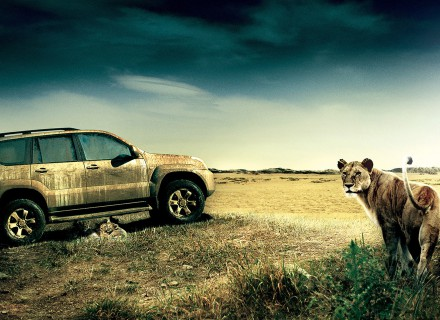 DDB-TOYOTA LAND CRUISER-3