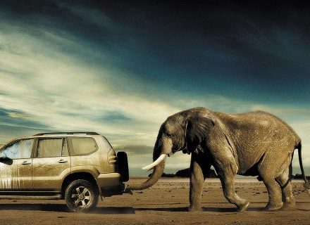 DDB-TOYOTA LAND CRUISER-4